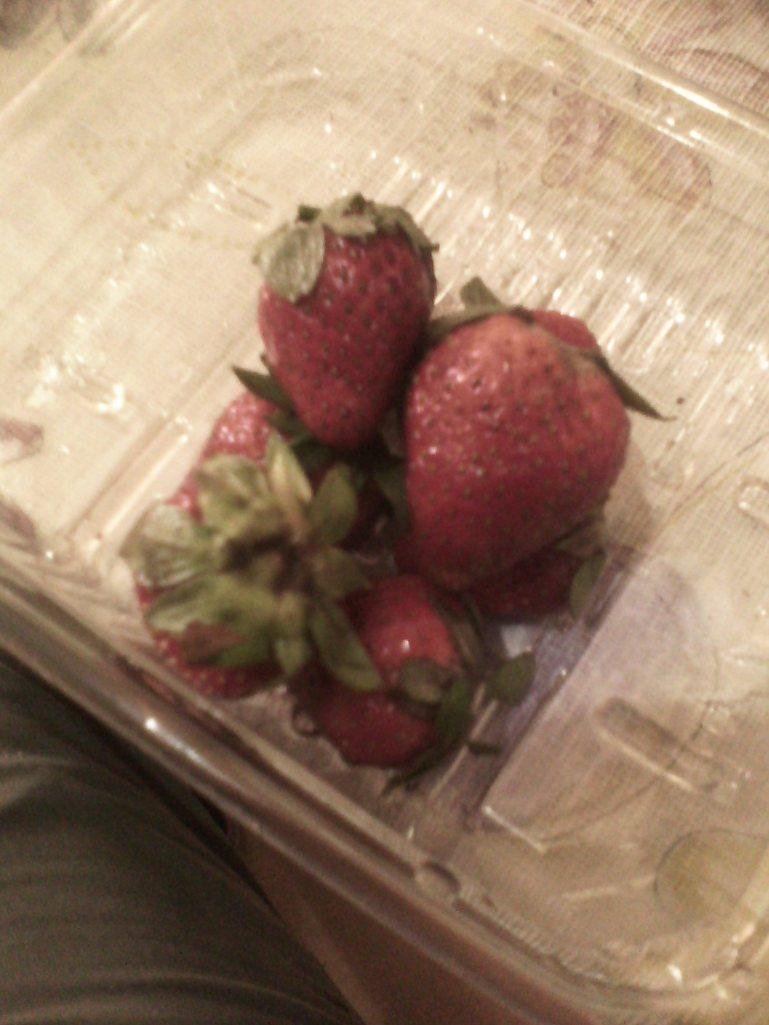 The last strawberries of the season