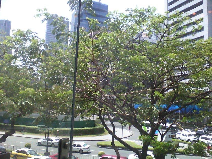 Nice views of the street below
